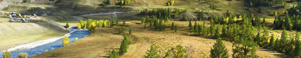 Etude faune et flore, Etude d'impact, Etude Natura 2000, Zone humide